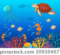 Sea animals swimming under the ocean 30930407