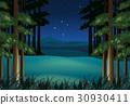 scene, night, stars 30930411