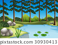 Forest scene with trees and river 30930413