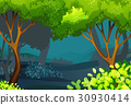 Forest scene with trees and bush 30930414