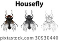 Doodle animal for housefly 30930440