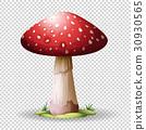 Red mushroom on transparent background 30930565