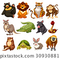 Different kinds of jungle animals 30930881