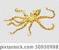 Octopus on transparent background 30930998