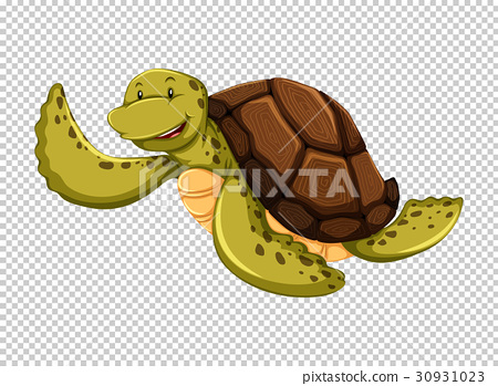 Sea turtle on transparent background 30931023