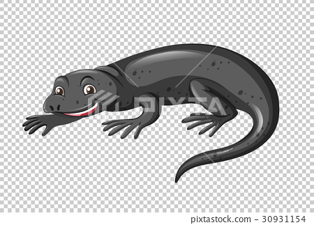 Black lizard on transparent background 30931154