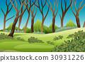 scene, forest, tree 30931226