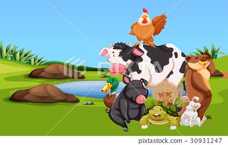Farm animals on the farmyard 30931247