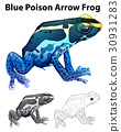 Doodle animal for blue poison arrow frog 30931283