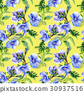 Wildflower anemone flower pattern  in a watercolo 30937516