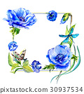 Wildflower anemone flower frame in a watercolor 30937534