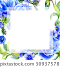Wildflower anemone flower frame in a watercolor 30937578