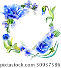 Wildflower anemone flower frame in a watercolor 30937586