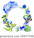 Wildflower anemone flower frame in a watercolor 30937598