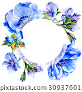 Wildflower anemone flower frame in a watercolor 30937601