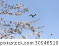 无线电遥控模型 飞行 苍蝇 30946519