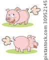 pig, vector, vectors 30952145