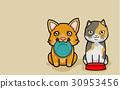 貓 貓咪 插圖 30953456