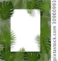 White paper green tropical background palm leaves 30960993