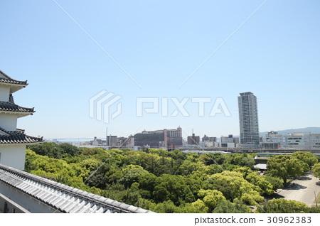 新鮮的綠色和明石公園 30962383