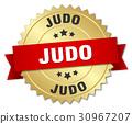 judo round isolated gold badge 30967207