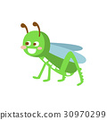 Cartoon smiling grasshopper colorful character 30970299