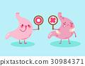 腹部 解剖学 漫画 30984371