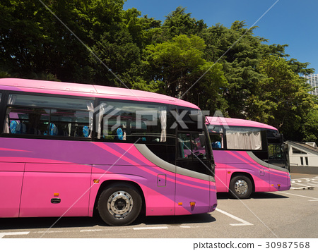 Sightseeing Bus Lined Up With Parking Lot Stock Photo 30987568 Pixta