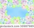 繡球花框架 30987989
