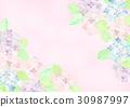 繡球花框架 30987997