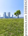 สวน,สวนสาธารณะ,ทัศนียภาพ 30988362