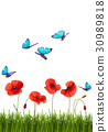 Summer background with poppies and butterflies. 30989818