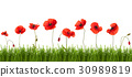 Summer background with poppies and butterflies. 30989819