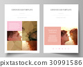 Business templates for brochure, magazine, flyer 30991586