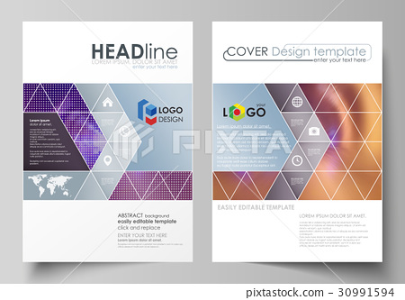 Business templates for brochure, magazine, flyer 30991594