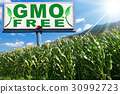 GMO Free - Billboard in a Corn Field 30992723