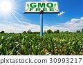 GMO Free - Billboard in a Corn Field 30993217