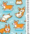 Corgi seamless pattern 30994084