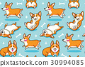 Corgi seamless pattern. Funny background with 30994085
