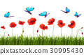 Summer background with poppies and butterflies. 30995430