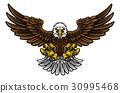 Bald American Eagle Mascot 30995468
