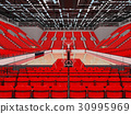arena, basketball, modern 30995969
