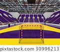 Beautiful modern handball arena with purple seats 30996213