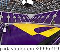 Beautiful modern handball arena with purple seats 30996219