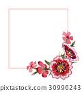 Wildflower carnation flower frame in a watercolor 30996243