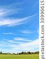 잔디밭, 푸른, 하늘 30996615