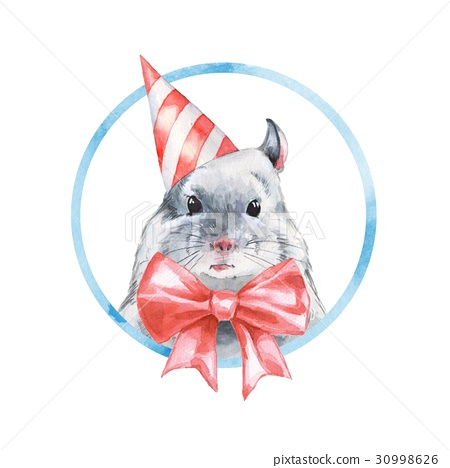 Chinchilla 1. Watercolor birthday card 2 30998626