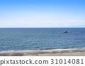 海 大海 海洋 31014081