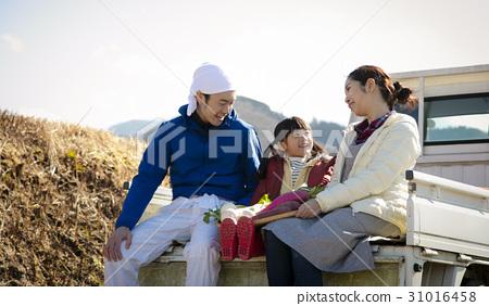 國家生活農業 31016458