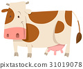 spotted cow cartoon animal 31019078